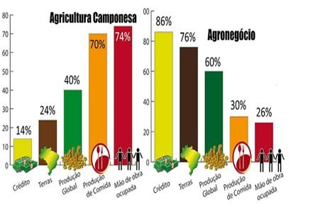 agricultura familiar x agranegocio producao de alimentos