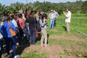 Grupos visitaram plantações orgânicas no bairro Demétria