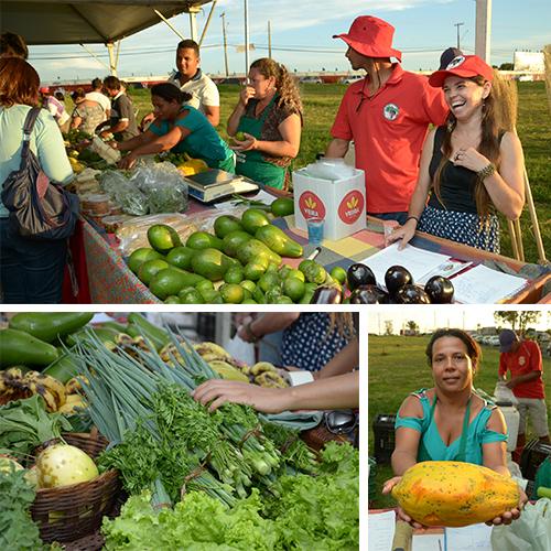 feira de organicos 2
