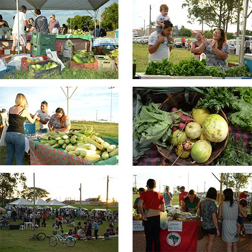 feira de organicos