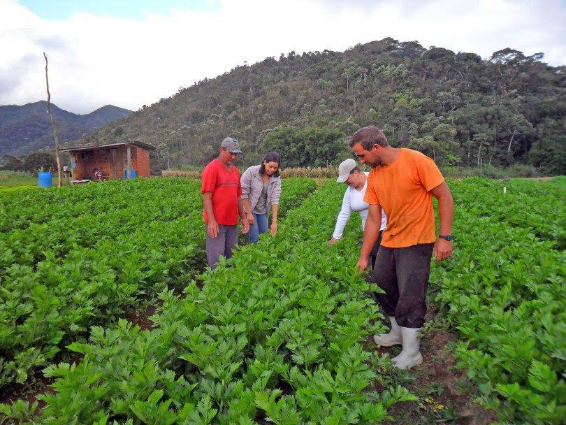 brasil-guatemala-discutem-politicas-publicas