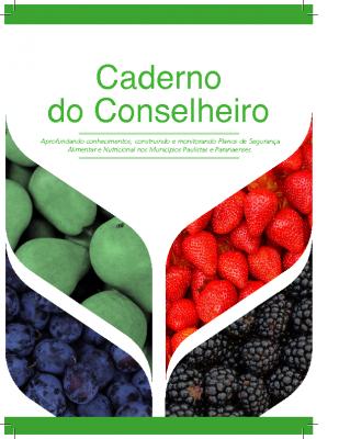 2019_caderno_conselheiro-final